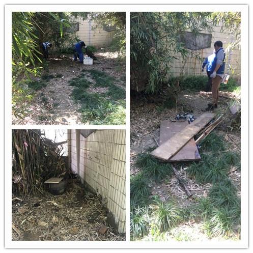 中山街道蓝天二村居民区团支部开展清洁家园活动