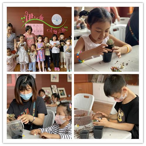 中山街道蓝天二村居民区团支部开展趣味多肉DIY活动