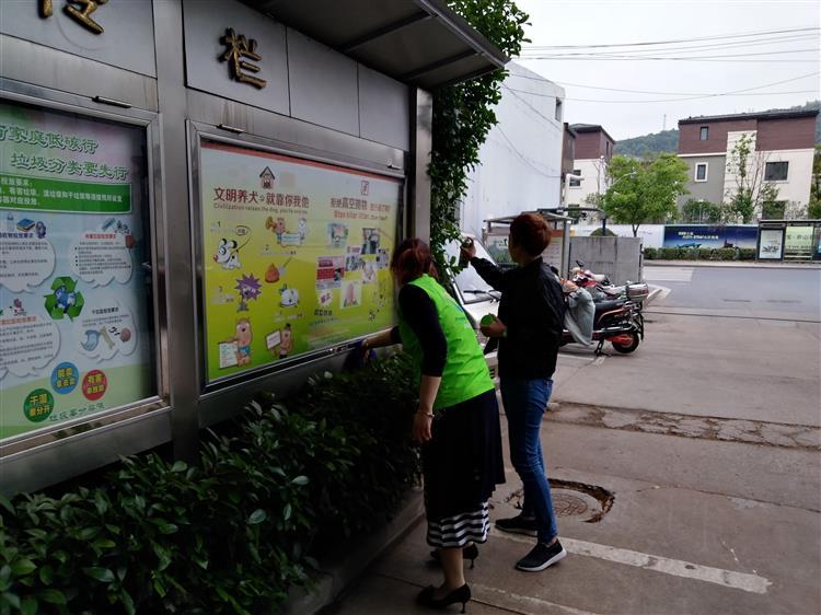佘山镇陈坊居民区团支部开展五四清洁活动